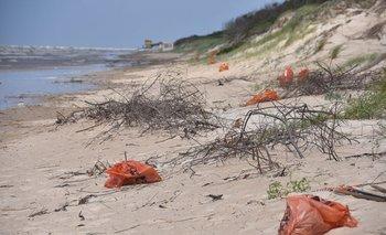 Ocho de cada diez canarios están satisfechos con la gestión de residuos de Orsi