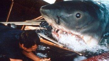 """La película """"Tiburón"""", basada en la exitosa novela de Peter Benchley del mismo nombre, tuvo un efecto desastroso en cómo la gente ve a los tiburones."""