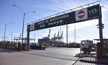 Incautaron 500 kilos en el puerto de Montevideo