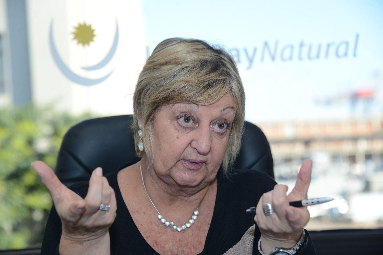 Recibe Uruguay 29% menos turistas extranjeros en enero_Spanish