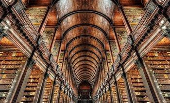 """""""La sola existencia de las bibliotecas ofrece la mejor evidencia de que aún podemos tener esperanza sobre el futuro del hombre"""", dijo el poeta T.S. Eliot, quien había sido feliz en la biblioteca del Trinity College de Dublín, Irlanda."""