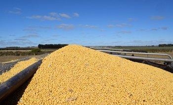 Según Ceres, lo positivo está en la afirmación de señales positivas para el sector agropecuario.