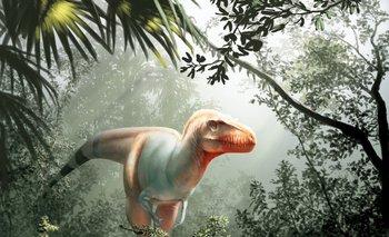 Dinosaurios Enamorados La Cancion Viral Cantada Por Una Nina De 3 Anos Entrá y conocé nuestras increíbles ofertas y promociones. dinosaurios enamorados la cancion