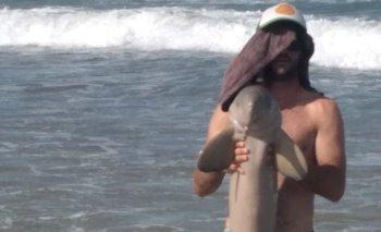 El capataz de la playa rescata al delfín en la costa.