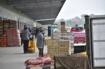 La moderación inflacionaria se da en línea con las expectativas de los analistas consultados por el Banco Central (BCU).