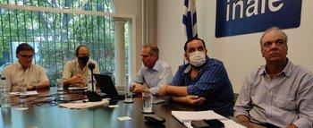 Autoridades del Inale y ministerios de Ganadería, Economía e Industria en reunión virtual con gremiales lecheras