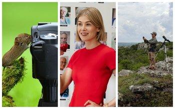 Naturaleza, cine y recorridas entre las recomendaciones de esta semana