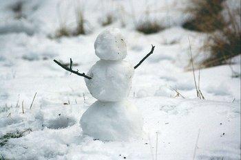 Texas atravesó una tormenta de nieve inédita que dejó escenas nunca vistas en ese lugar