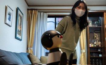 Hay diferentes modelos y tipos de robots; todos tienen funciones distintas.