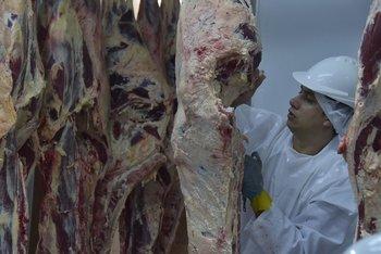 Hay cerca de 20.000 trabajadores en la industria frigorífica.