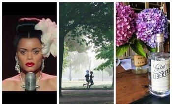 Danza, cine, música, libros y salud, en el picnic de esta semana