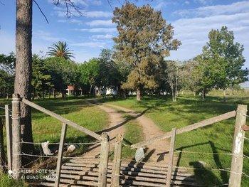 Campo de 226 hectáreas.