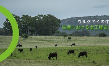 La imagen con la que se promociona la ganadería uruguaya en Japón.