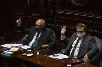 Los senadores de Cabildo Abierto, Guillermo Domenech y Raúl Lozano, en el plenario
