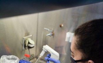 Los voluntarios serán sometidos a pruebas PCR durante un año, antes y después de la vacunación