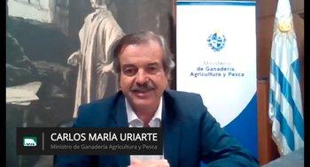 El ministro de Ganadería, Agricultura y Pesca en el webinar de Rural