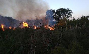Incendio ocurrido en un campo próximo a Zonamérica.