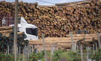 Madera y productos de madera fueron los rubros con mayor incidencia positiva en las exportaciones totales de marzo.