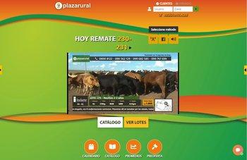 La venta 230 de Plaza Rural se desarrolla en cuatro días.
