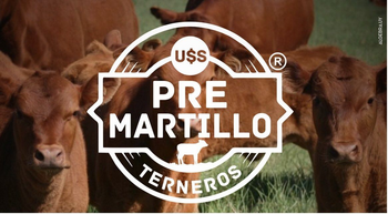 Pantalla Uruguay ofrece la herramienta de Pre-Martillo junto al banco Itaú