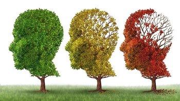 La complejidad de la enfermedad hace difícil encontrar una cura