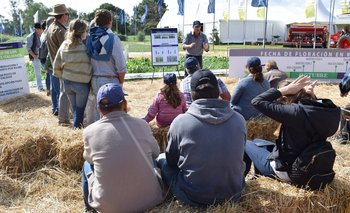 El aula virtual de PGG Wrightson Seeds, una de las atracciones de cada Expo Melilla.