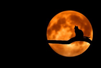 Luna llena prevista para fines de junio.