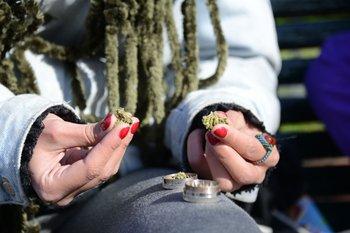 Hay 45.550 personas registradas para acceder al cannabis de uso recreativo en farmacias, según datos del Ircca.