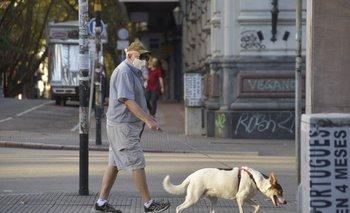 Hombre pasea a su perro por Montevideo