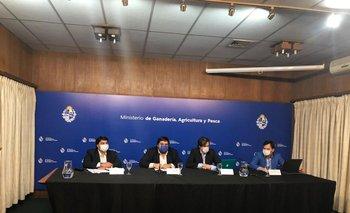 Pablo Lanz, Juan Ignacio Buffa, Nicolás Chiesa y Germán Rodríguez