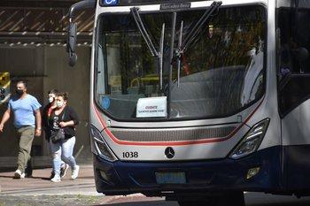 """¿De qué manera los autos """"obstaculizan"""" al transporte colectivo?"""