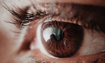 La visión es uno de los sentidos más frágiles