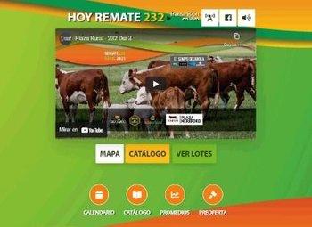 El remate Nº 232 de Plaza Rural se realizó en tres jornadas.