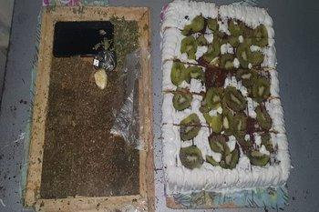 Torta bajo la cual se escondió la droga y el celular que el imputado pretendió ingresar a la cárcel de Treinta y Tres