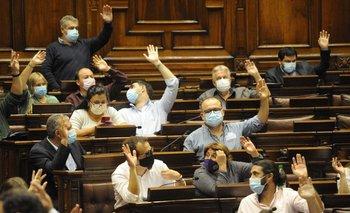 Los diputados del Frente Amplio plantearon analizar el tema en el Parlamento