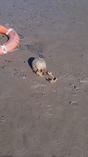 Restos óseos hallados en el balneario Los Titanes