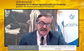 Carlos María Uriarte, durante su exposición en el webinar de FAO.
