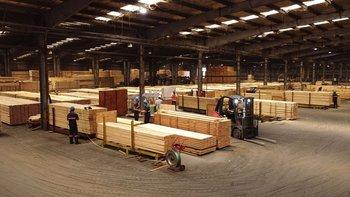 Frutifor Lumber Company