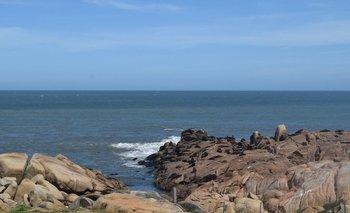 El gobierno instalará un hotel cinco estrellas en las costas de Rocha