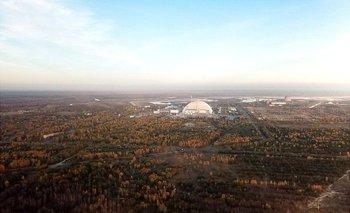Los altos niveles de contaminación tras el accidente de 1986 hicieron que muchos árboles murieran y sus hojas se tornasen rojas