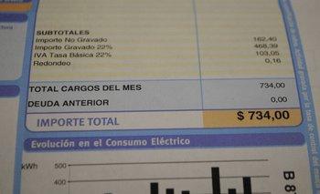 La amplia mayoría de los hogares tiene contratada la tarifa Residencial Simple.