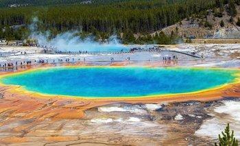 Los manantiales termales de Yellowstone albergan microorganismos capaces de vivir en condiciones extremas.