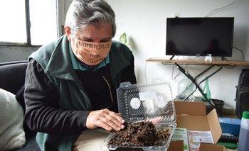 Fernando Muñoz, se dedicó a la cría de lombrices rojas californianas hace siete años.