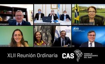 La reunión de ministros del CAS se desarrolló de modo virtual.