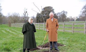 El primer árbol que Carlos plantó para esta iniciativa fue un roble Verdún, especie que se plantó por primera vez en el Reino Unido después de la Primera Guerra Mundial como memorial de la guerra