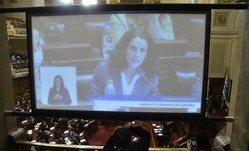 Interpelación Azuzena Arbeleche, ministra de Economía y Finanzas