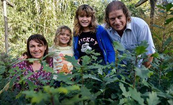 Los emprendedores crearon el vivero Imperio Verde en el año 2000.