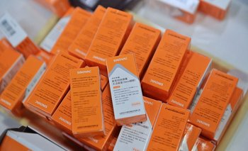Sinovac planea producir sus vacunas en Chile