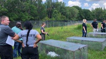 Los cementerios forenses prestan servicios a las autoridades que intentan esclarecer crímenes.