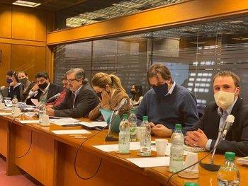 Equipo de MGAP durante la sesión en la Comisión de Ganadería.
